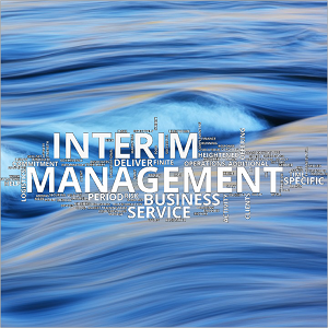 Wordcloud - Interim Management -square 300x300