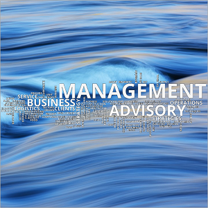 Wordcloud - Management Advisory - square 300x300
