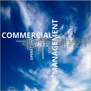 commercial operations management accelerate evolution
